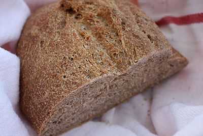 whole wheat no-knead bread, test one