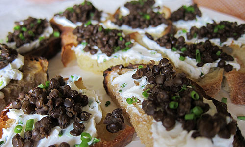 are running beluga lentil crostini an orange lentil layer beluga