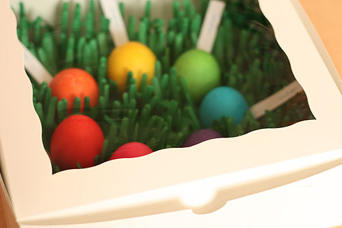 colored eggs in a bakery box