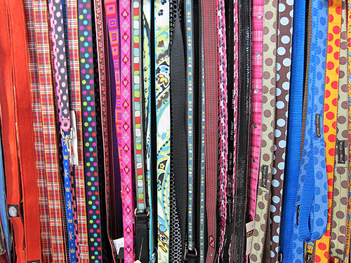 colorful leashes