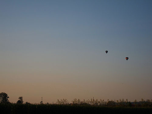 hot air balloons in the distance