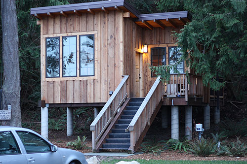 [ a modern cabin in the woods ]