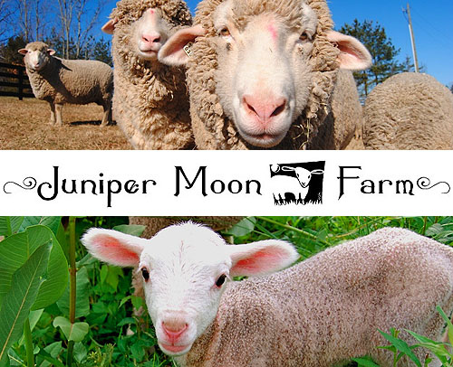 Juniper Moon Fiber Farm