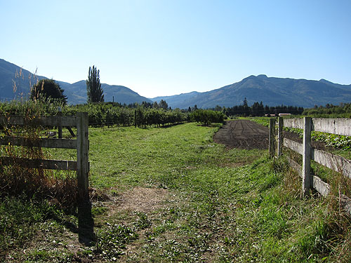 Jones Creek Farm, with foothills in the distance