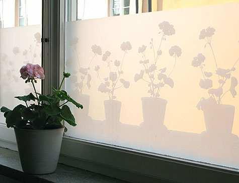 Window Films Design Sponge