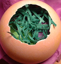 last into the egg goes the easter grass